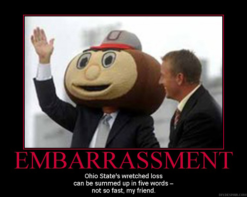 what the fuck is a buckeye